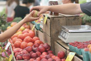 einkauf, handel, nachhaltigkeit - fruits by refe